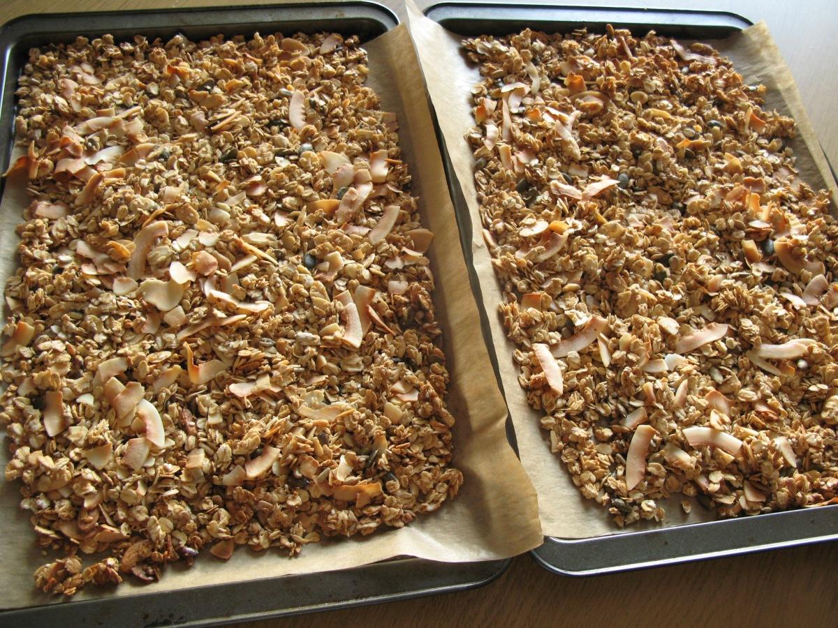 FODMAP free healthy granola